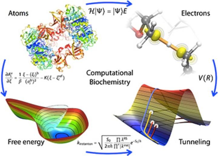 Computational Biochemistry (c)